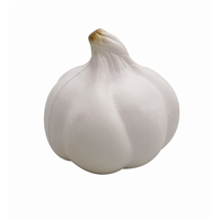 SV003  Promotional Anti Stress Garlic